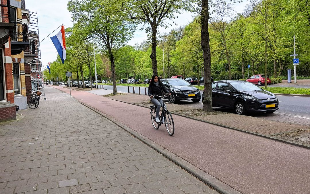 Biking Like a Local in The Netherlands